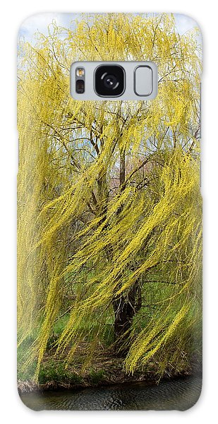 Galaxy Case featuring the photograph Wind In The Willow by Viviana  Nadowski