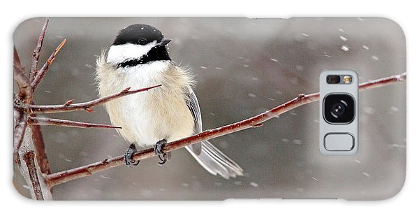 Windblown Chickadee Galaxy Case