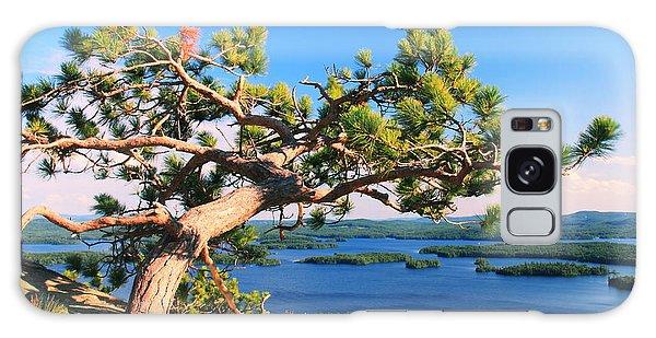 Windswept Pine On Rattlesnake Mountain Galaxy Case
