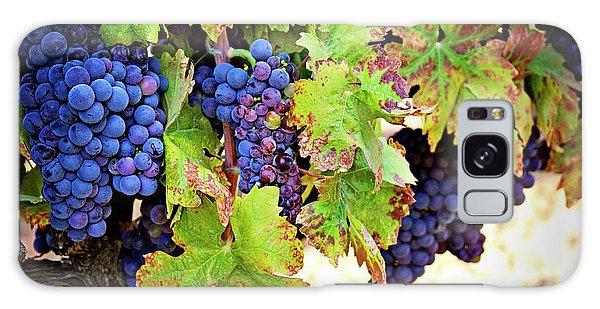 Wine Country - Napa Valley California Photography Galaxy Case