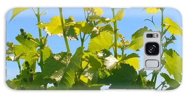 Food And Beverage Galaxy Case - #wine #vines Reaching For The Sky :-) by Shari Warren