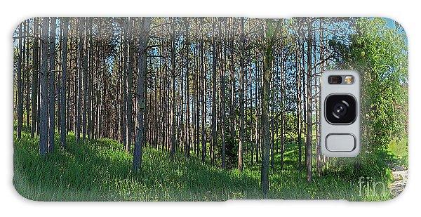 Wingate Prairie Veteran Acres Park Pines Crystal Lake Il Galaxy Case