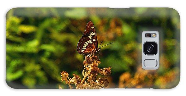 Wingo Butterfly Galaxy Case
