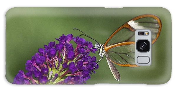 Wings Like Glass Galaxy Case by Ruth Jolly
