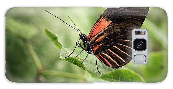 Wings Of The Tropics Butterfly Galaxy Case