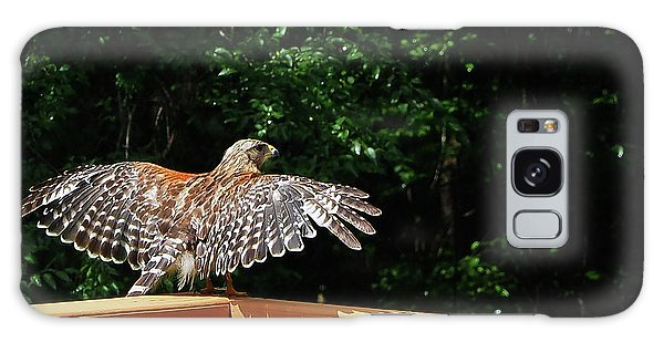 Wingspan Of Hawk Galaxy Case