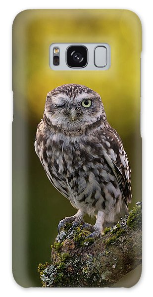 Winking Little Owl Galaxy Case