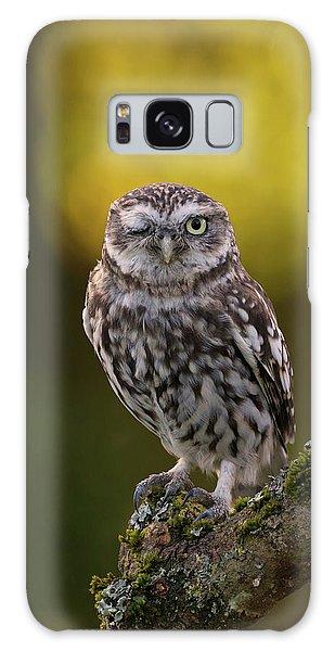 Winking Little Owl Galaxy Case