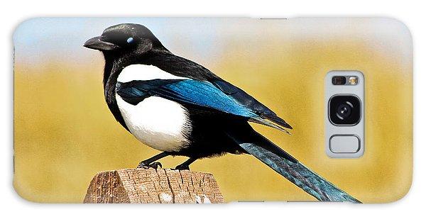 Winking Magpie Galaxy Case by Mitch Shindelbower