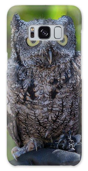 Winston Wildlife Art By Kaylyn Franks Galaxy Case