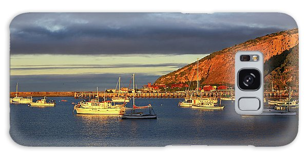 Galaxy Case featuring the photograph Winter Afternoon Sun At Friendly Bay by Nareeta Martin