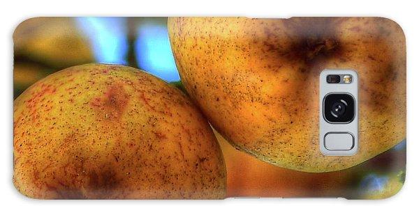 Winter Apples 2 Galaxy Case