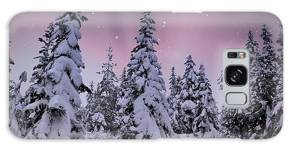 Winter Beauty Galaxy Case