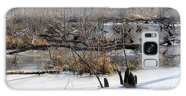 Winter Beaver Bog Galaxy Case