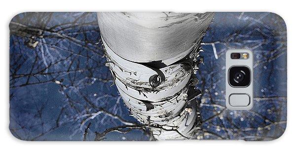 Winter Birch Galaxy Case