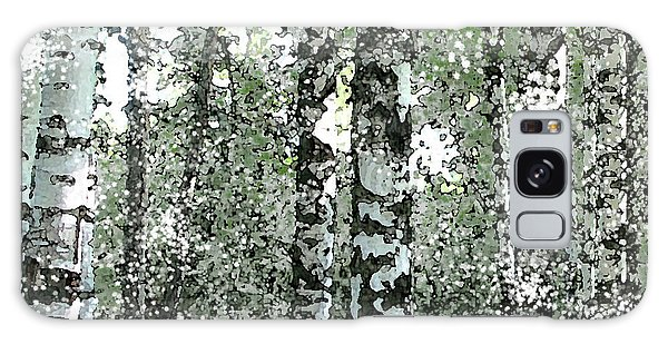 Winter Birches Galaxy Case by Walter Chamberlain