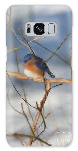 Winter Bluebird Art Galaxy Case