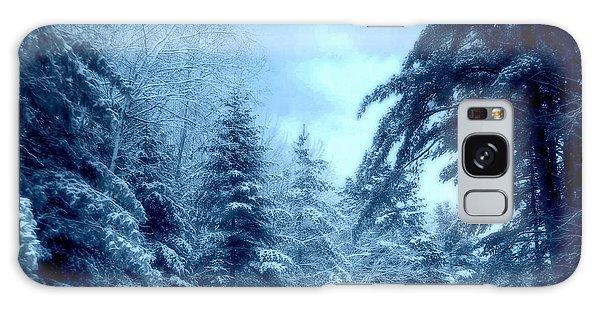 Winter Blues Galaxy Case