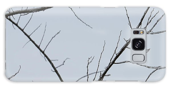 Winter Branches Galaxy Case