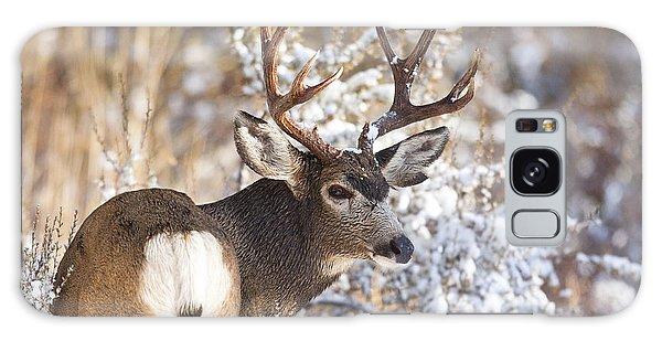 Winter Buck Galaxy Case