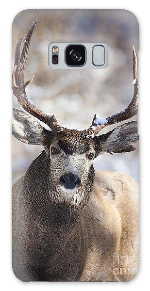 Winter Buck II Galaxy Case