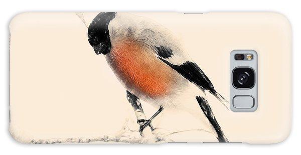 Winter Bullfinch Galaxy Case
