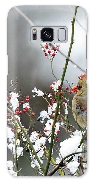 Winter Cardinal Galaxy Case by Gary Wightman