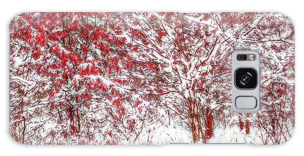 Winter Color  Galaxy Case by Randy Steele
