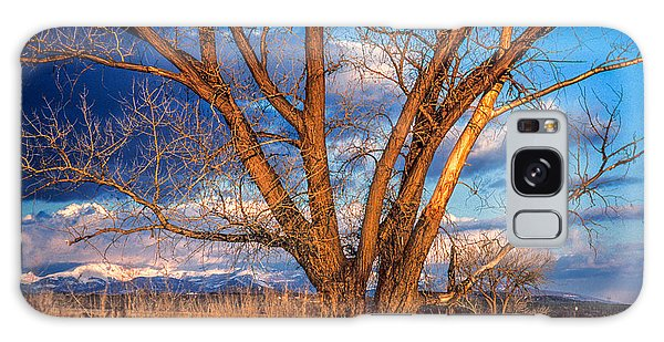 Winter Cottonwood Ranch Landscape Colorado Galaxy Case