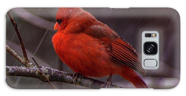 Winter Crimson  Galaxy Case