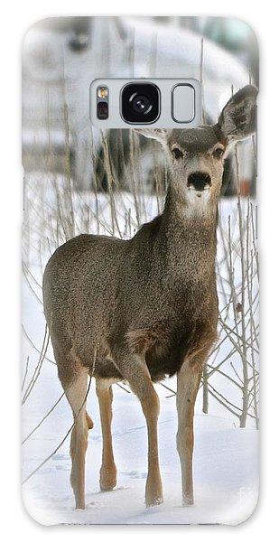 Winter Deer On The Tree Farm Galaxy Case