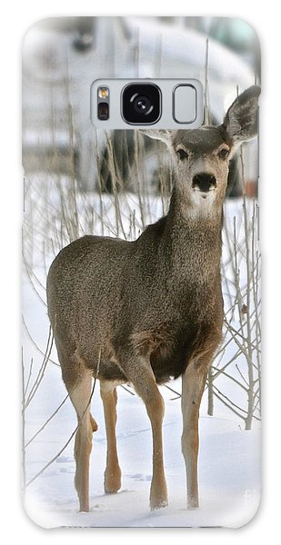 Winter Deer On The Tree Farm Galaxy Case