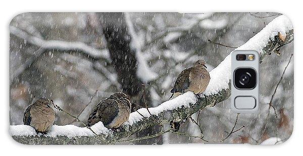 Winter Doves Galaxy Case by Diane Giurco