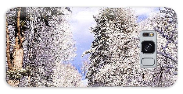 Winter Drive Galaxy Case