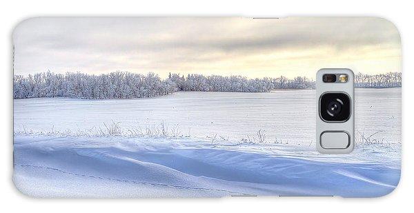 Winter Field Galaxy Case