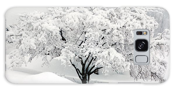 Winter Fluff Galaxy Case