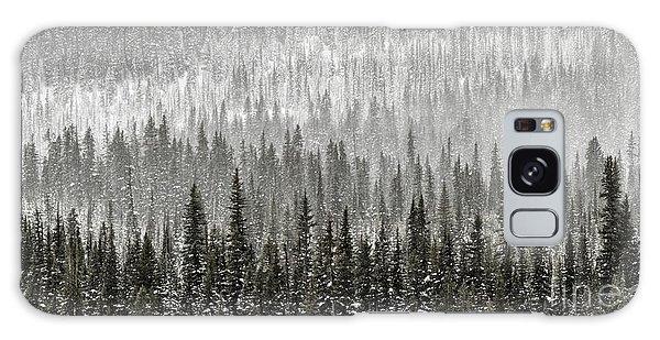 Winter Forest Galaxy Case by Brad Allen Fine Art
