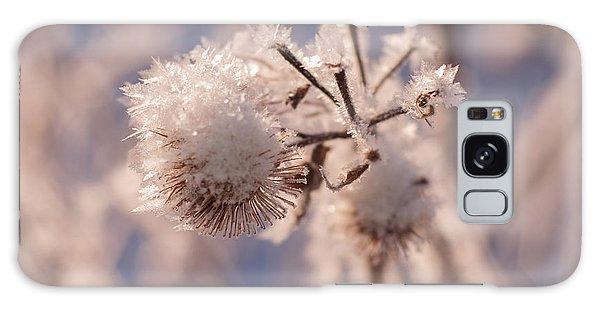 Winter Frost Galaxy Case