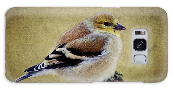 Winter Goldfinch Galaxy Case