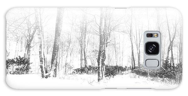 Snowy Forest - North Carolina Galaxy Case