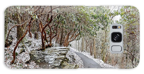 Winter Hiking Trail Galaxy Case