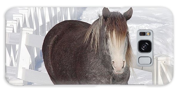 Winter Horse Galaxy Case by Debbie Stahre