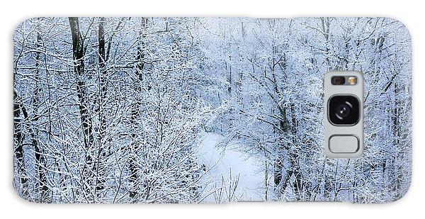 Winter Ice Storm Galaxy Case