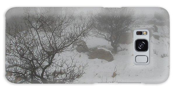 Winter In Israel Galaxy Case by Annemeet Hasidi- van der Leij