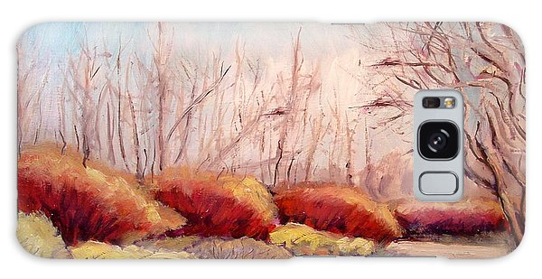 Winter Landscape Dry Creek Bed Galaxy Case