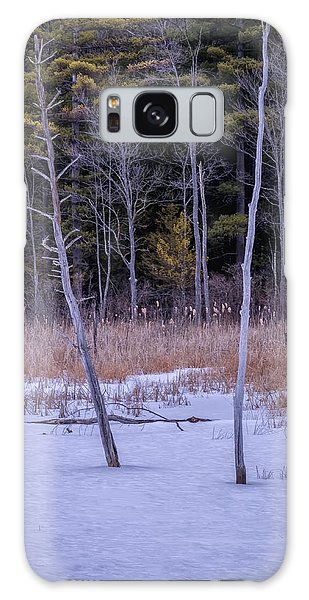 Winter Marsh And Trees Galaxy Case