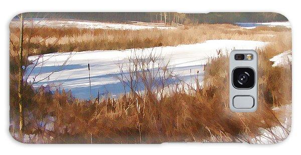 Winter Marsh Galaxy Case by Betsy Zimmerli