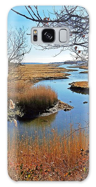 Winter Marsh Galaxy Case