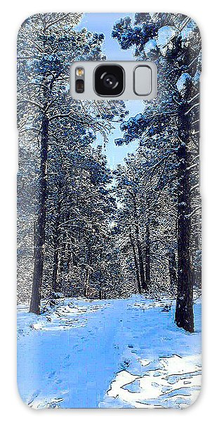 Winter Morning Galaxy Case by Walter Chamberlain