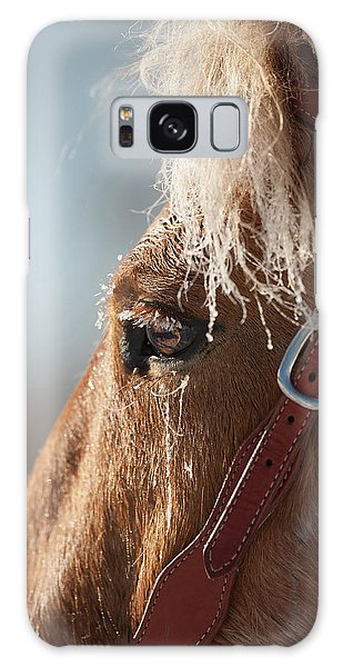 Galaxy Case - Winter Mustang Eye by Shawn Hamilton